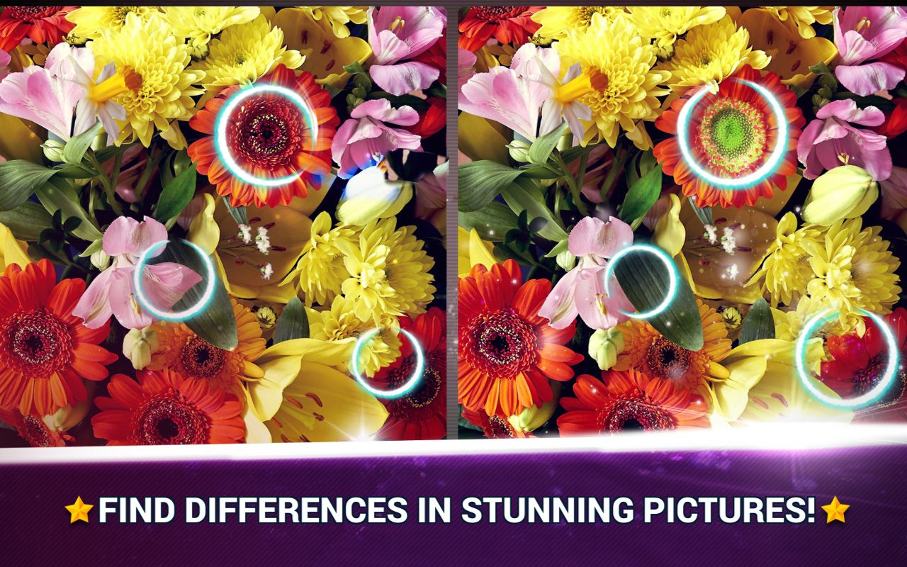 Find the Difference Flowers